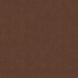 Fenix brown +1 000.00 р.