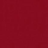 Fenix red +1 000.00 р.