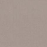 Kolibri camel +2 100.00 р.
