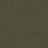 Deli oliva +700.00 р.